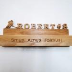 Деревянная спортивная медальница полка для кубков от Feeling Wood